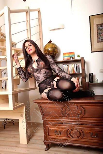 Lady Amora Transex Safada  VERONA 3925714486